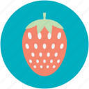 food, fruit, healthy food, raw food, strawberry icon