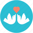 adoration, heart sign, love, love theme, two doves