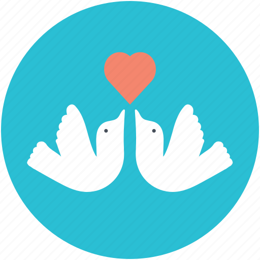 adoration, heart sign, love, love theme, two doves icon
