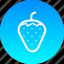 fruit, love, romance, sex, strawberry icon