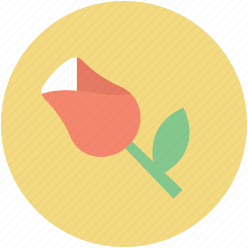 blooming, flower, romance symbol, rose, rosebud icon