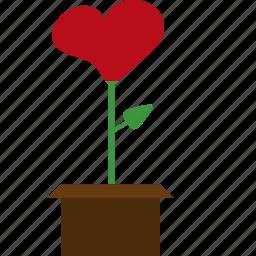 flower, hearth, pot, valentines icon