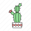 cactus, flower, green, nature, plant, tree, tropicalplant icon