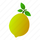 cooking, food, fruit, kitchen, lemon icon