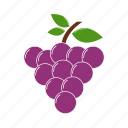 cooking, food, fruit, grapes, kitchen, restaurant icon