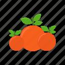 cooking, food, fruit, kitchen, orange, restaurant icon