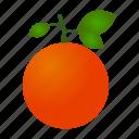 cooking, food, fruit, kitchen, orange icon