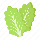 diet, food, leaf, lettuce, salad, vegetable, vegetarian icon