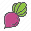 beet, diet, food, health, vegetable, vegetarian, vitamin icon