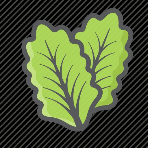 diet, food, leaf, lettuce, salad, vegetable, vegetarian icon