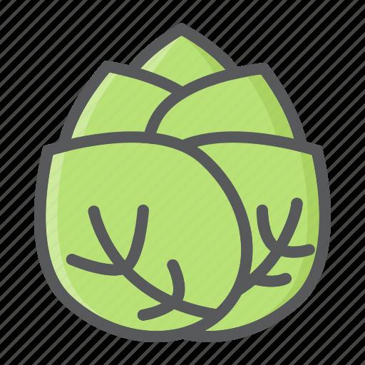 cabbage, diet, food, health, vegetable, vegetarian, vitamin icon
