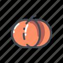 pumkin, vegetable icon
