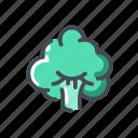 broccoli, vegetable icon