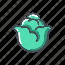 cole, vegetable icon