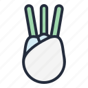 fennel, vegetable, food, healthy