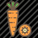 carrot, food, organic, vegetable