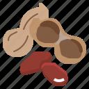 nuts, peanuts, salty, snack, vegan icon