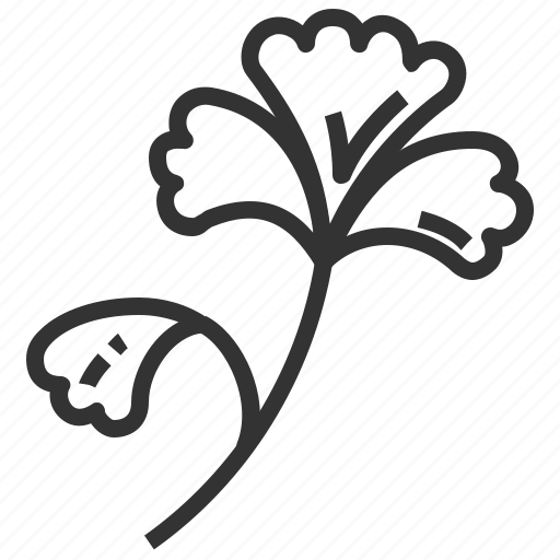 ginkgo, leaf, leaves, plant icon