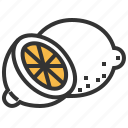 food, fruit, healthy, lemon, vegetable icon