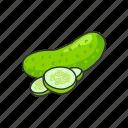 cucumber, food, healthy, leafy, plants, veggies icon