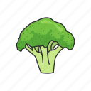 broccoli, food, greens, healthy, plants, vegetable, veggies icon