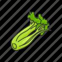 celery, food, greens, healthy, plants, vegetable, veggies icon
