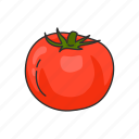 food, plant, red, species, tomato, vegetable