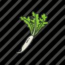 food, greens, healthy, plants, radish, vegetable icon