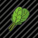 veggies, greens, plants, food, leafy, spinach icon