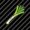 veggies, green, plants, healthy, leek, food icon