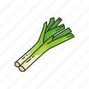 food, greens, healthy, leek, plants, veggies icon