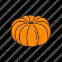 veggies, plants, vegetable, pumpkin, food, squash icon