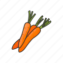 veggies, healthy, plants, vegetable, carrots, food