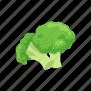 broccoli, food, greens, healthy, plants, vegetable, veggies icon