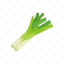 food, healthy, leek, plants, vegetable, veggies icon