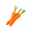 healthy, carrot, plants, food, vegetable, veggies
