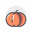 orange, pumkin, vegetable icon