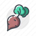 garlic, onion, potato icon