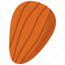 almond, food, nut icon