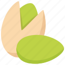 nut, pista, pistachio icon