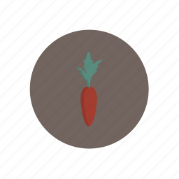 carrot, vegetables icon