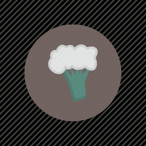 cauliflower, vegetables icon