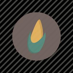 corn, vegetables icon