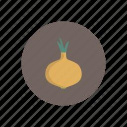 onion, vegetables icon