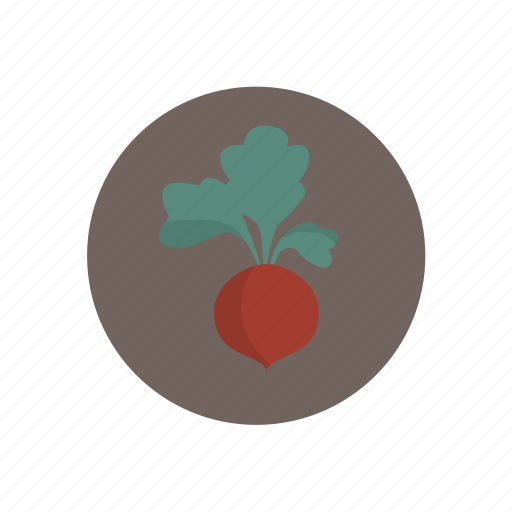 turnip, vegetables icon