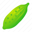 cucumber, food, green, health, organic icon