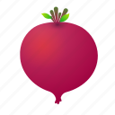 beet, beetroot, food, green, health, organic icon