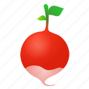 food, green, health, organic, radish icon