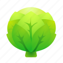 cabbage, food, green, health, organic icon