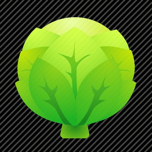 cabbage, food, green, health, organic icon